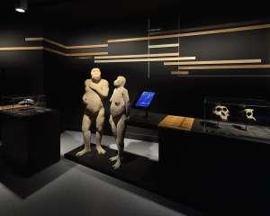 Galery of Men