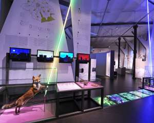 Museum for Natural Sciences