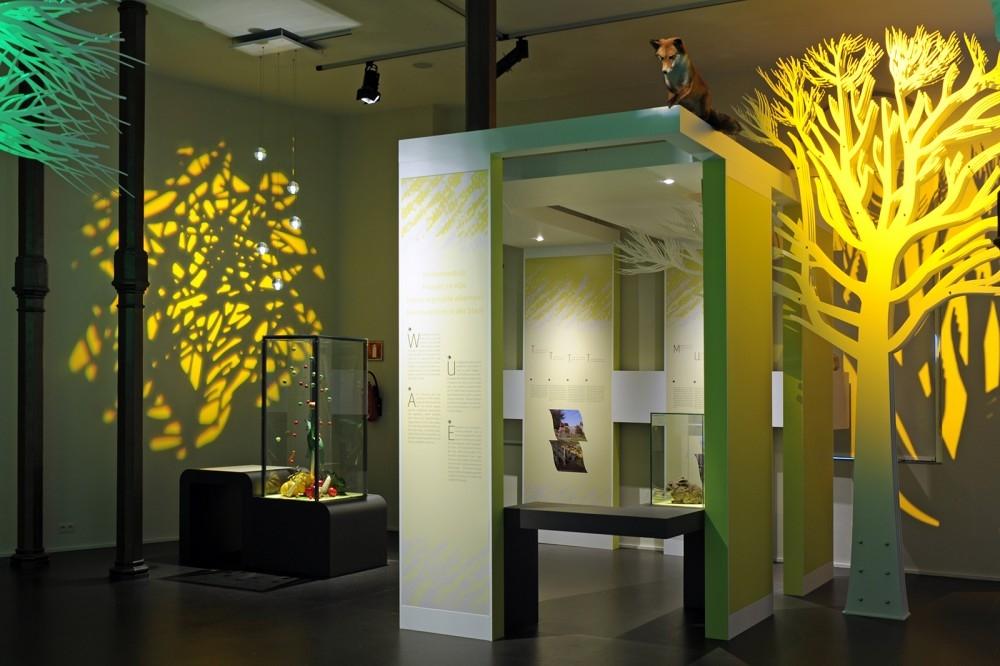 Atelier bois-schrijnwerkerij-Musée Biodiversité-conceptexpo-4