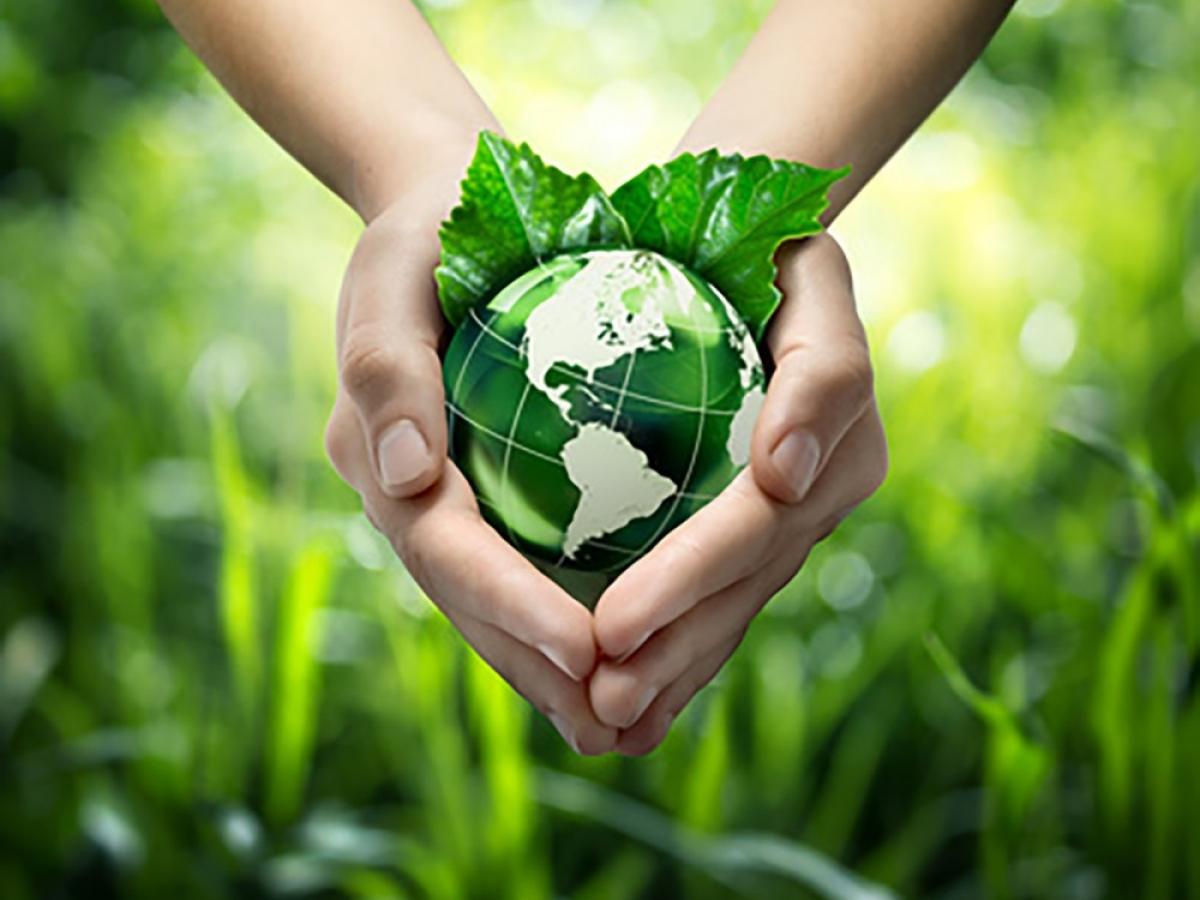 De ecologische impact van onze activiteiten verminderen